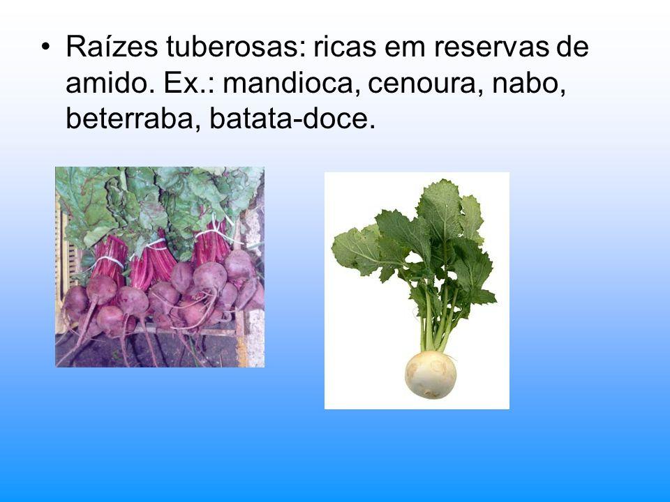 Raízes tuberosas: ricas em reservas de amido. Ex