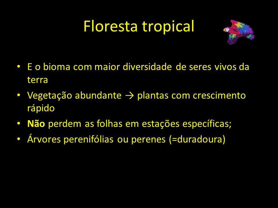 Floresta tropicalE o bioma com maior diversidade de seres vivos da terra. Vegetação abundante → plantas com crescimento rápido.