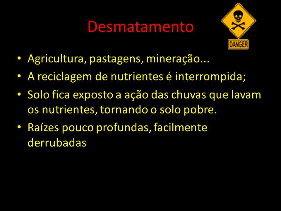 Desmatamento Agricultura, pastagens, mineração...