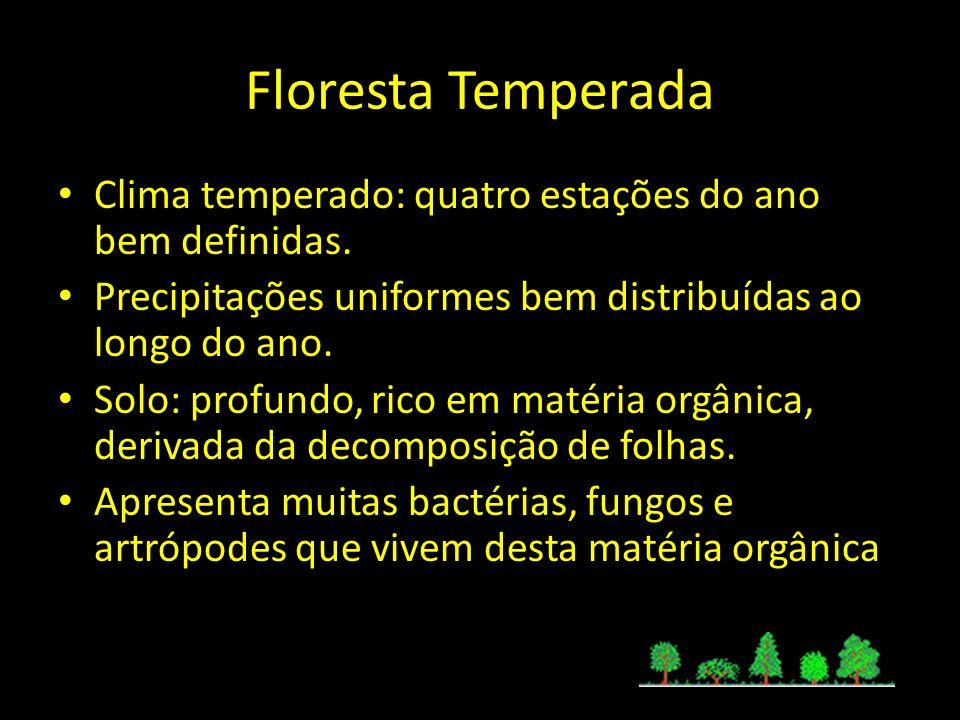 Floresta TemperadaClima temperado: quatro estações do ano bem definidas. Precipitações uniformes bem distribuídas ao longo do ano.