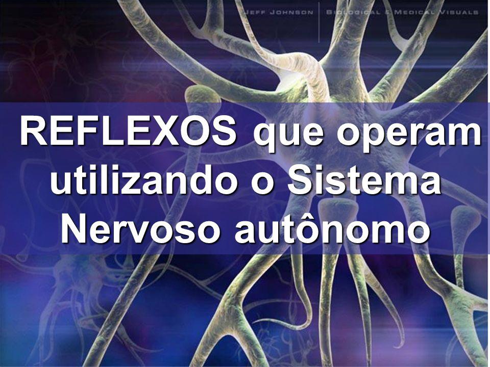 REFLEXOS que operam utilizando o Sistema Nervoso autônomo