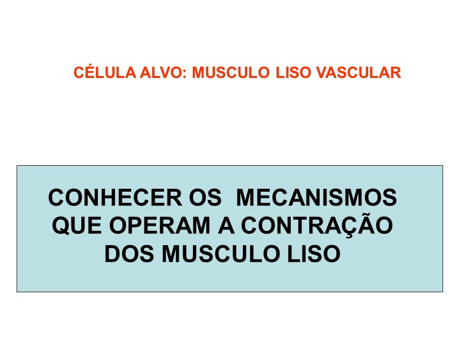 CONHECER OS MECANISMOS QUE OPERAM A CONTRAÇÃO DOS MUSCULO LISO