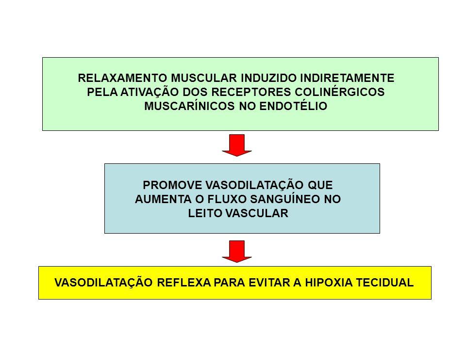 PROMOVE VASODILATAÇÃO QUE AUMENTA O FLUXO SANGUÍNEO NO LEITO VASCULAR