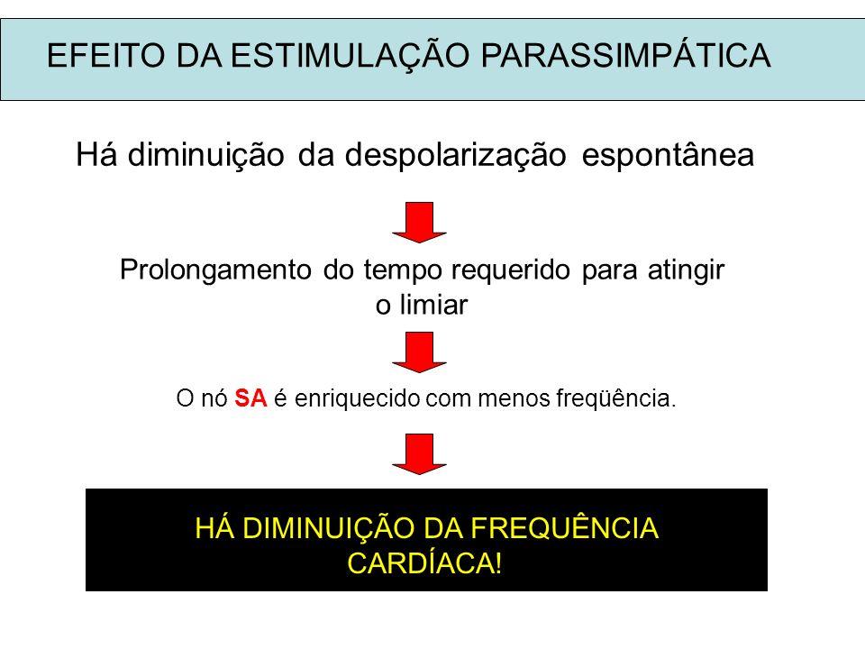 EFEITO DA ESTIMULAÇÃO PARASSIMPÁTICA