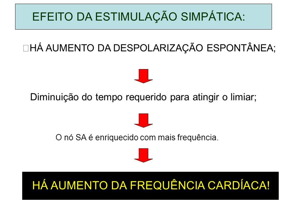 EFEITO DA ESTIMULAÇÃO SIMPÁTICA:
