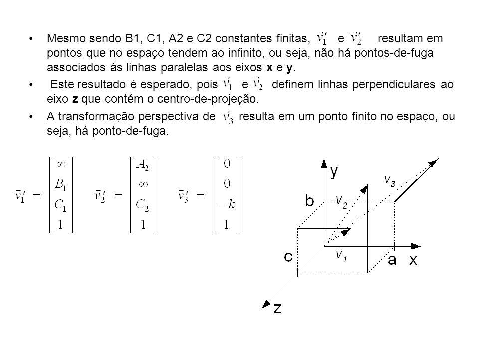 Mesmo sendo B1, C1, A2 e C2 constantes finitas, e resultam em pontos que no espaço tendem ao infinito, ou seja, não há pontos-de-fuga associados às linhas paralelas aos eixos x e y.