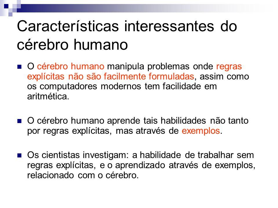 Características interessantes do cérebro humano