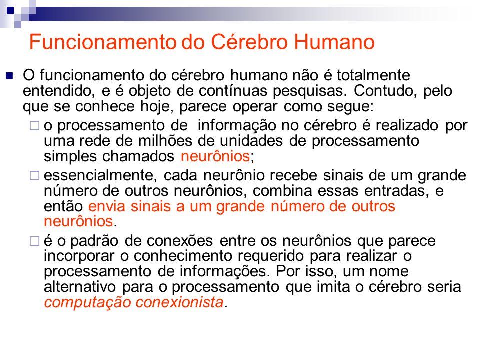 Funcionamento do Cérebro Humano