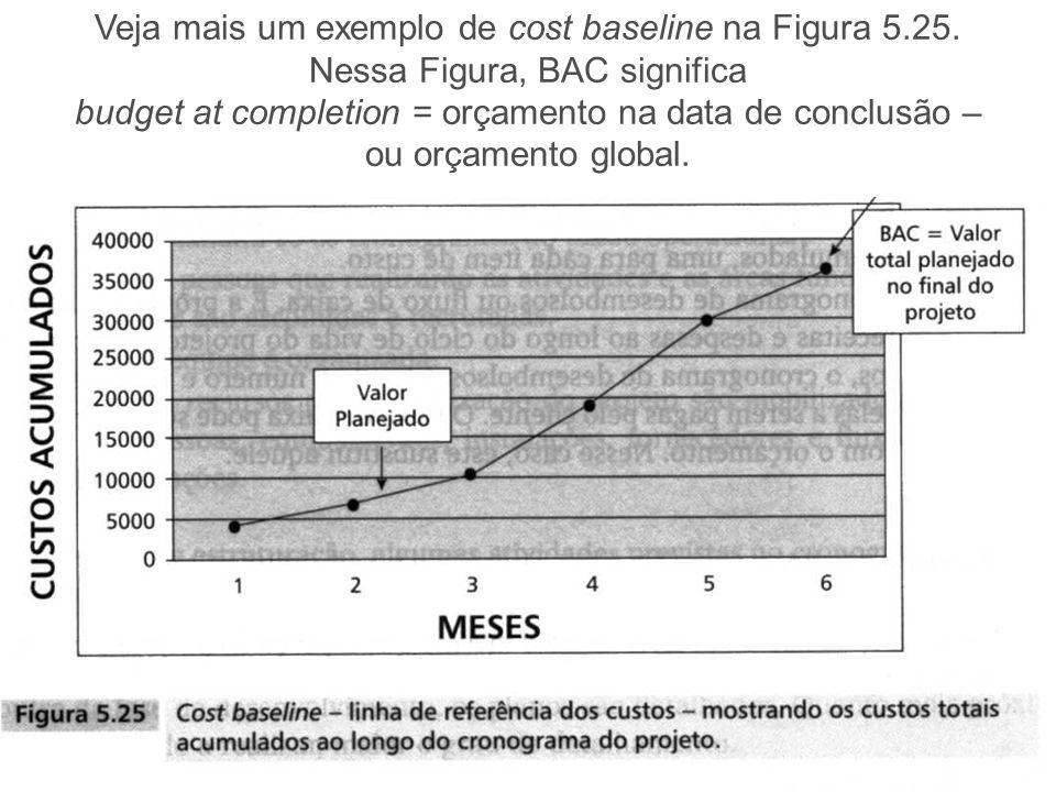 Veja mais um exemplo de cost baseline na Figura 5.25.