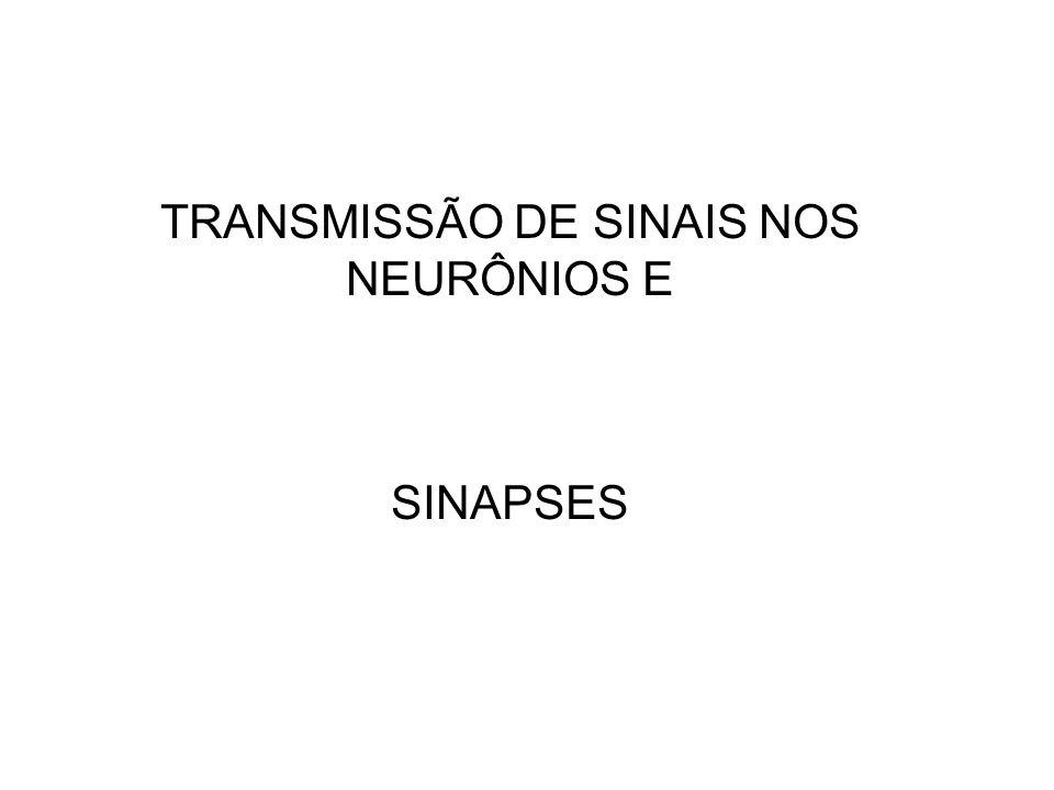 TRANSMISSÃO DE SINAIS NOS NEURÔNIOS E