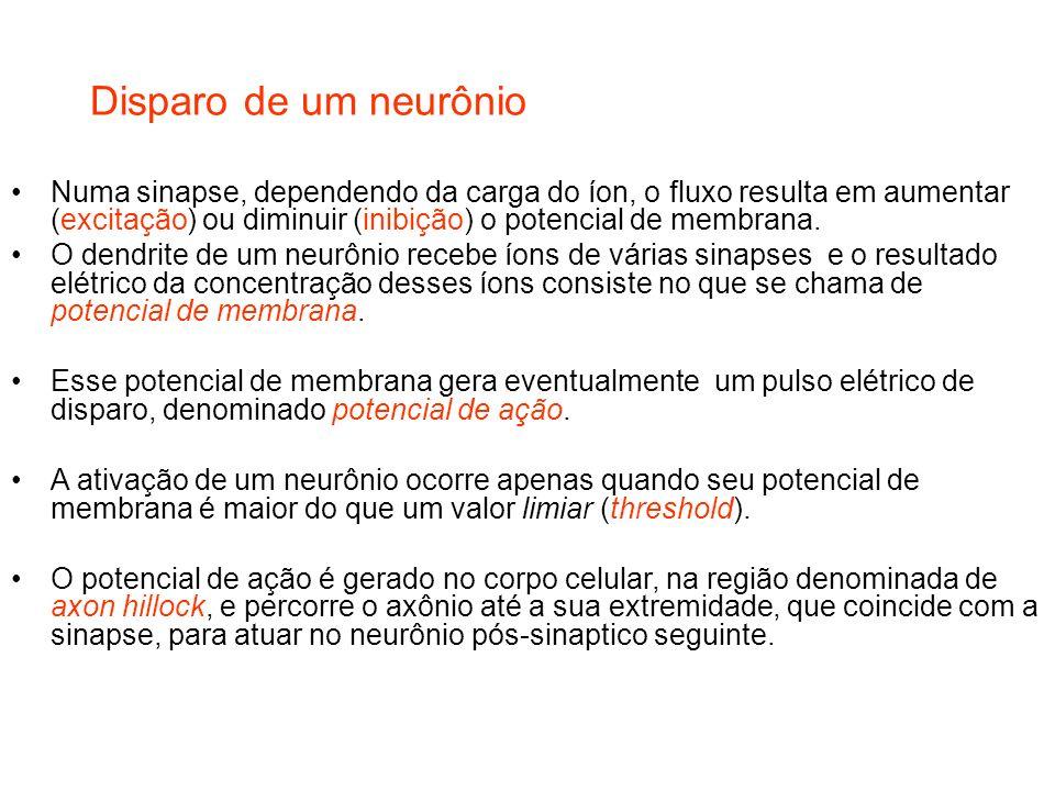 Disparo de um neurônio