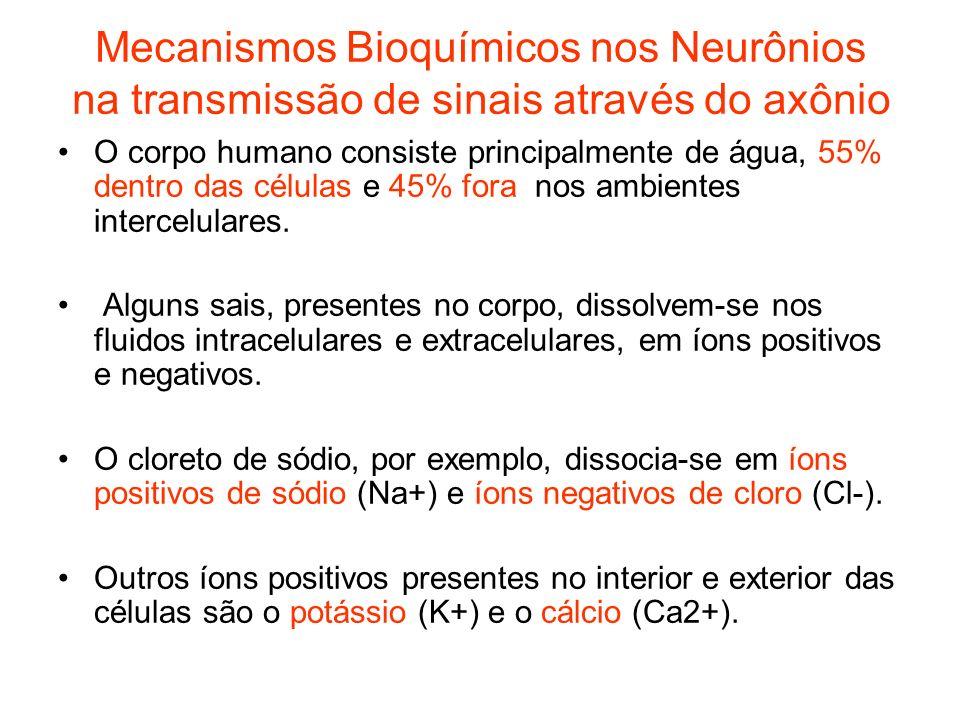 Mecanismos Bioquímicos nos Neurônios na transmissão de sinais através do axônio