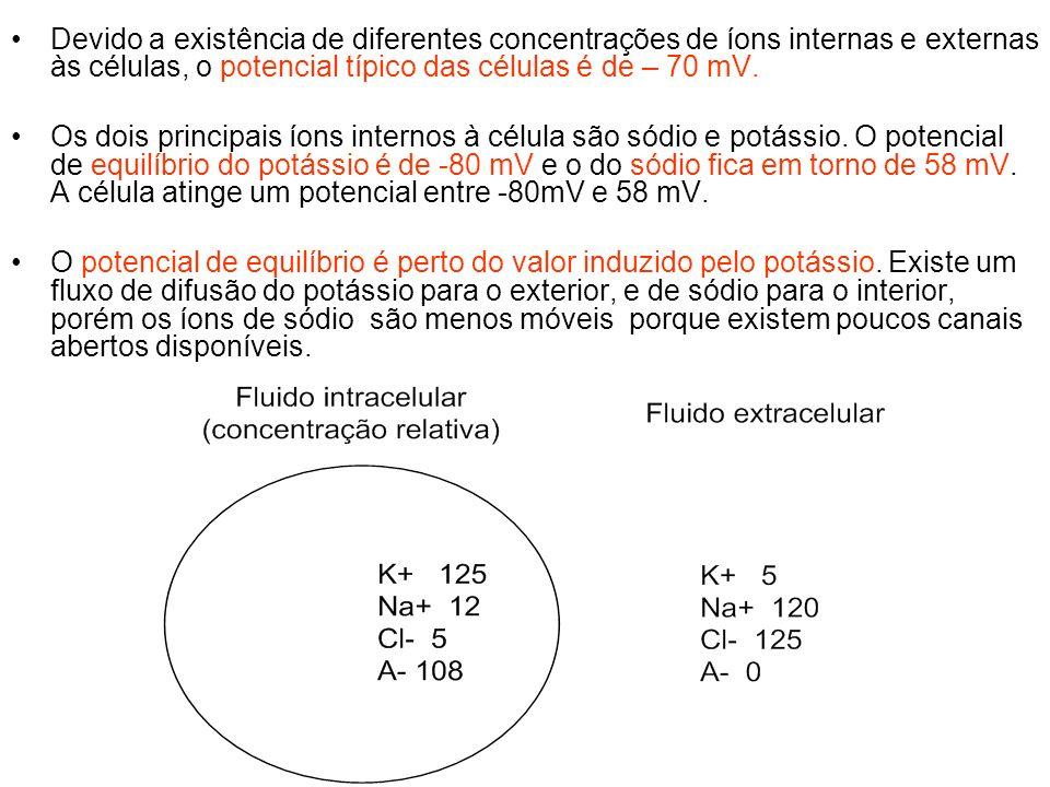 Devido a existência de diferentes concentrações de íons internas e externas às células, o potencial típico das células é de – 70 mV.