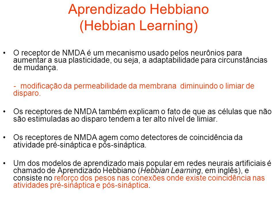 Aprendizado Hebbiano (Hebbian Learning)
