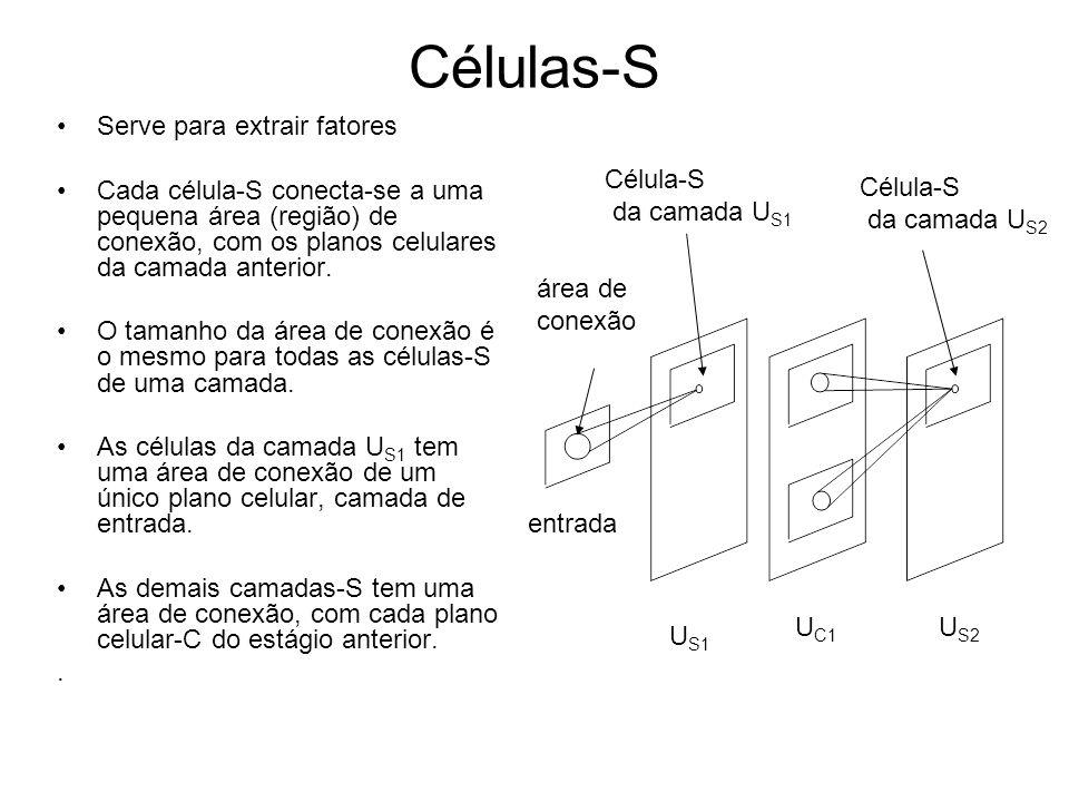 Células-S Serve para extrair fatores
