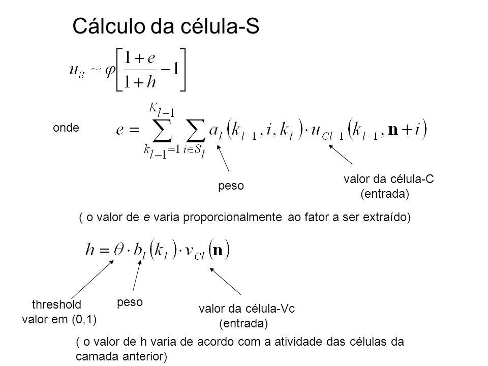Cálculo da célula-S onde valor da célula-C peso (entrada)