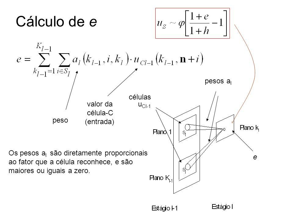 Cálculo de e pesos al células valor da célula-C (entrada) uCl-1 peso
