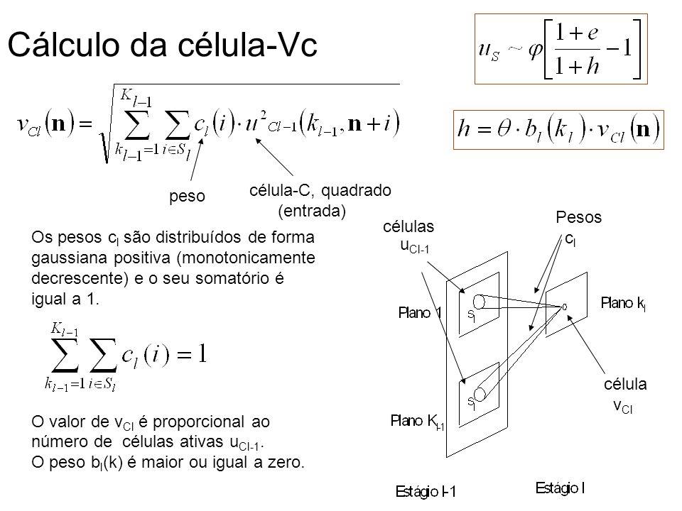 Cálculo da célula-Vc célula-C, quadrado peso (entrada) Pesos células