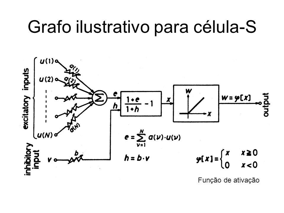 Grafo ilustrativo para célula-S