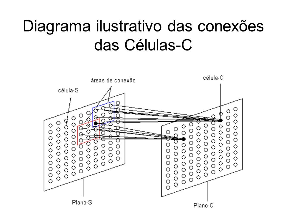 Diagrama ilustrativo das conexões das Células-C