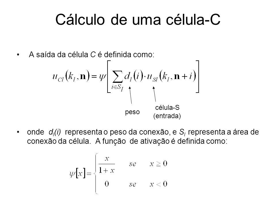 Cálculo de uma célula-C