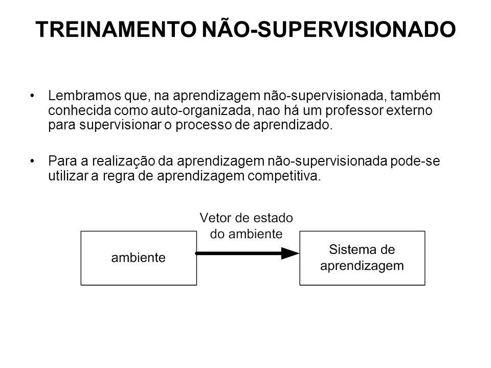TREINAMENTO NÃO-SUPERVISIONADO