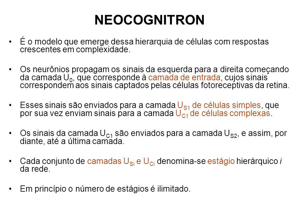 NEOCOGNITRON É o modelo que emerge dessa hierarquia de células com respostas crescentes em complexidade.