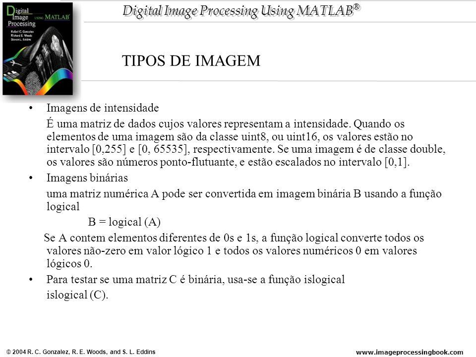 TIPOS DE IMAGEM Imagens de intensidade