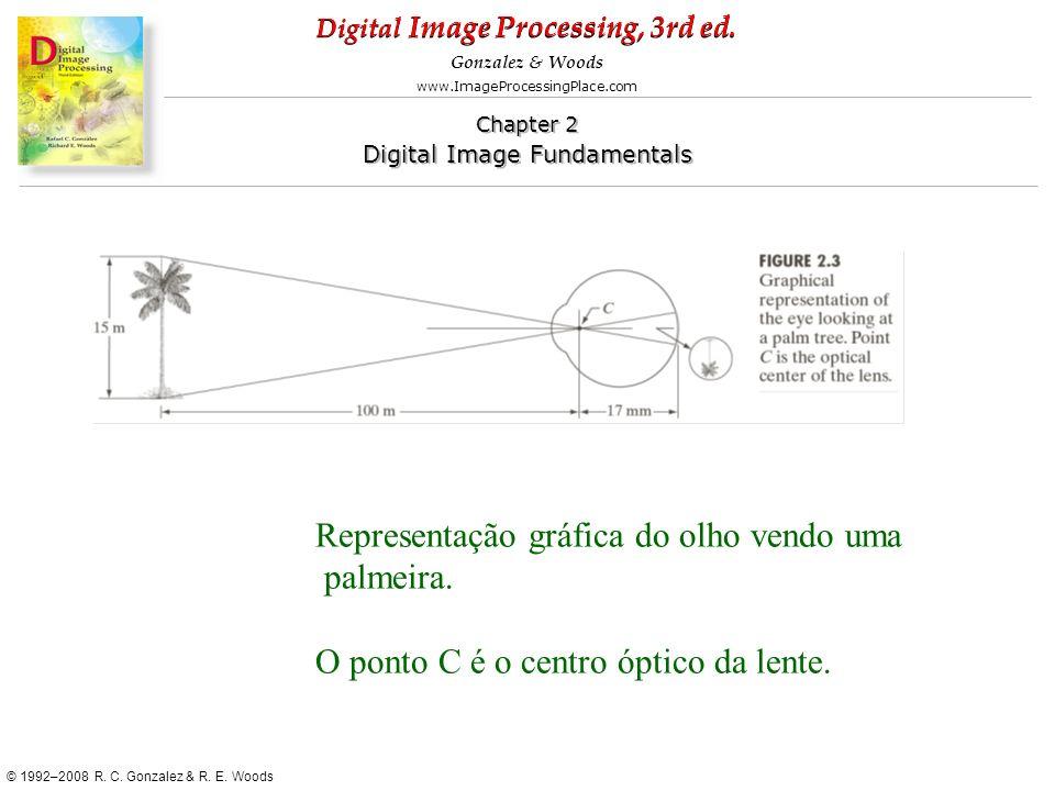 Representação gráfica do olho vendo uma