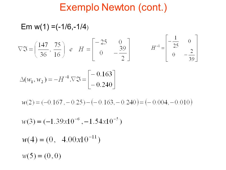 Exemplo Newton (cont.) Em w(1) =(-1/6,-1/4)