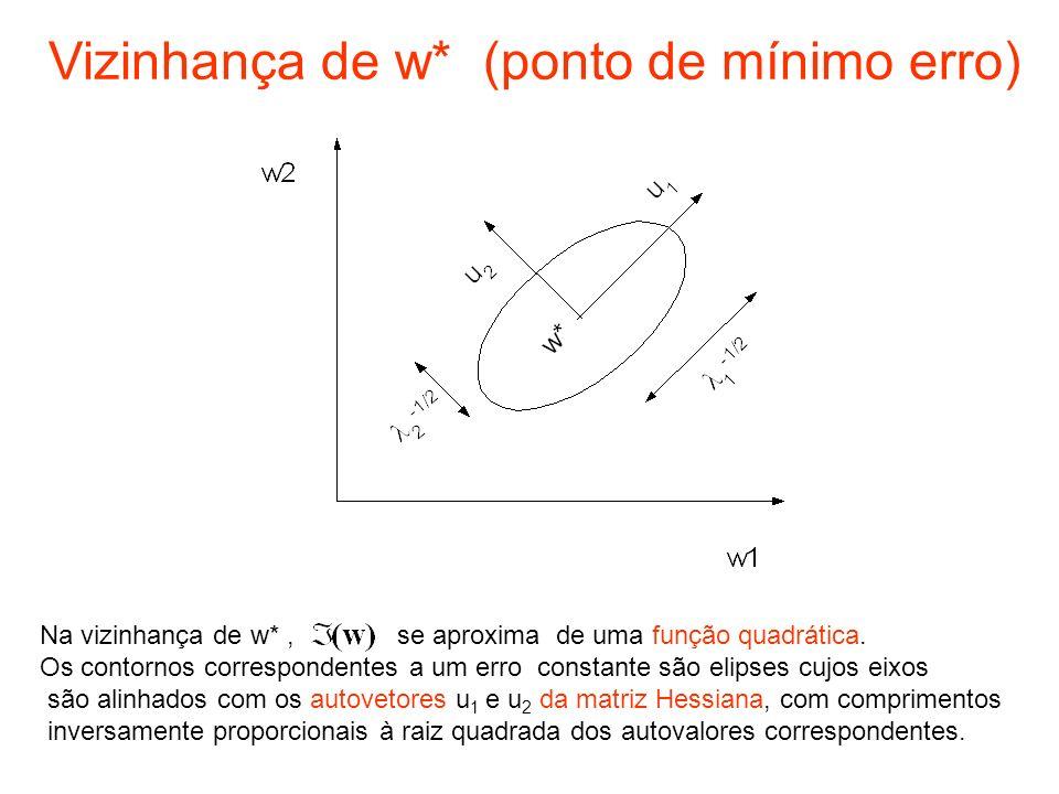 Vizinhança de w* (ponto de mínimo erro)
