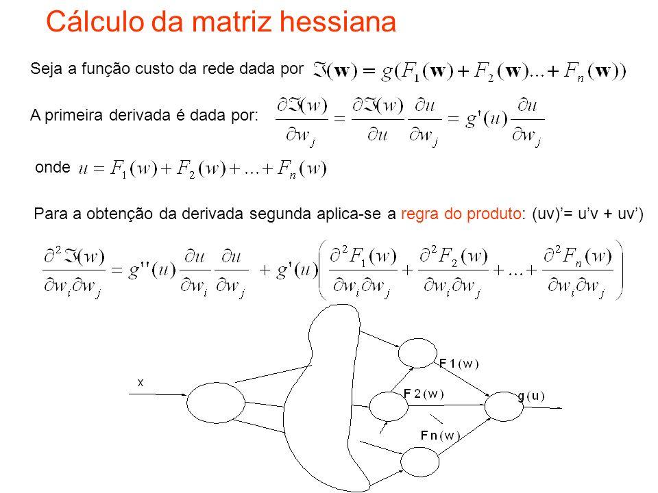 Cálculo da matriz hessiana