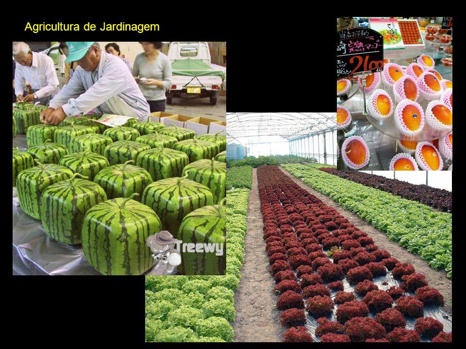 Agricultura de Jardinagem