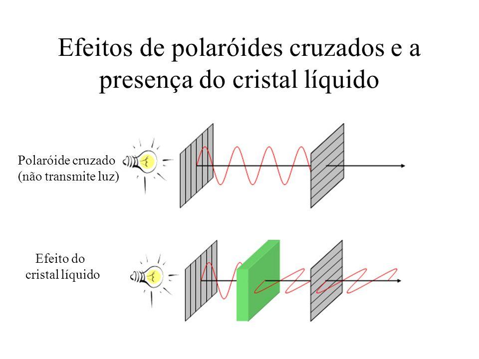 Efeitos de polaróides cruzados e a presença do cristal líquido