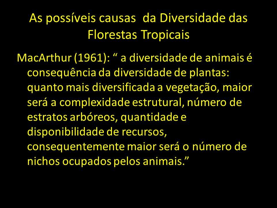 As possíveis causas da Diversidade das Florestas Tropicais