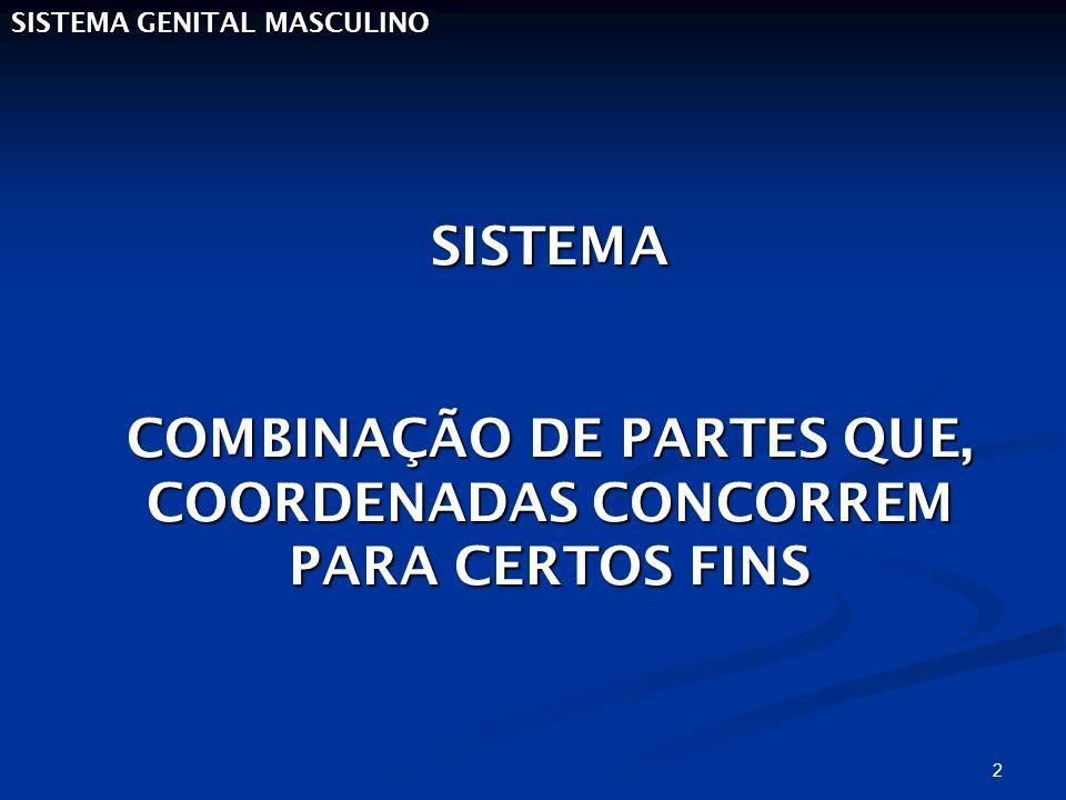 COMBINAÇÃO DE PARTES QUE, COORDENADAS CONCORREM PARA CERTOS FINS