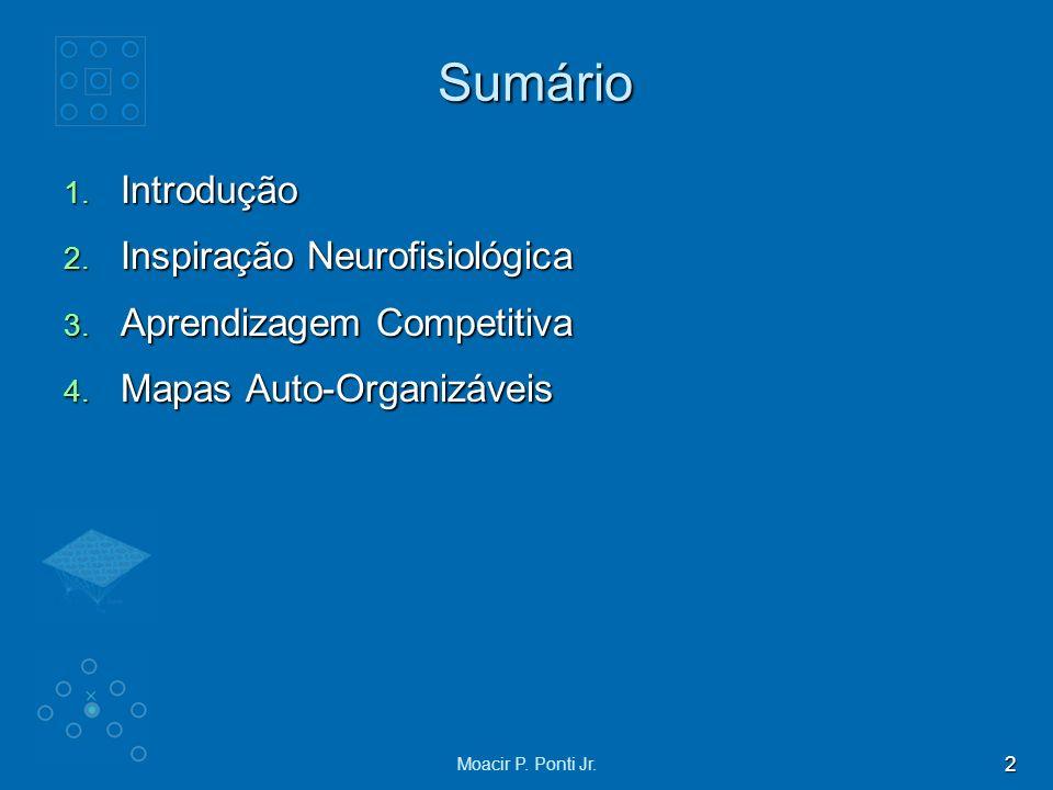 Sumário Introdução Inspiração Neurofisiológica