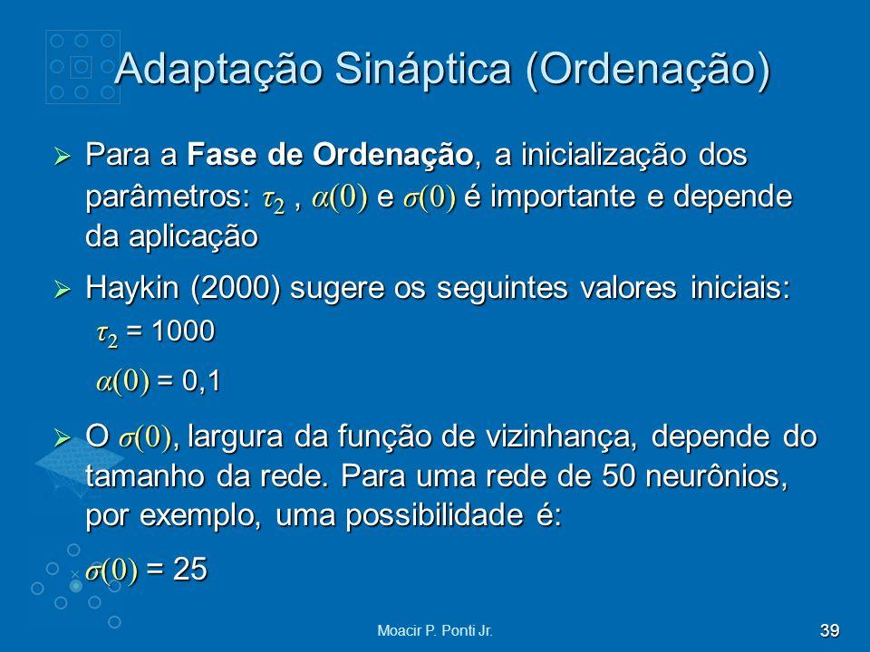 Adaptação Sináptica (Ordenação)