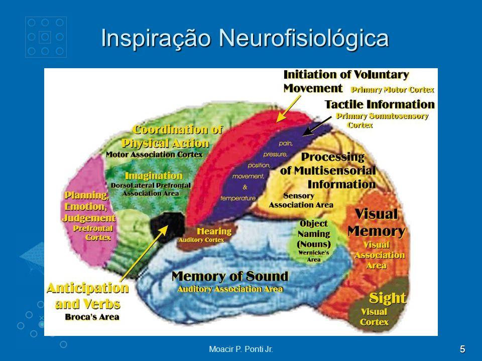 Inspiração Neurofisiológica