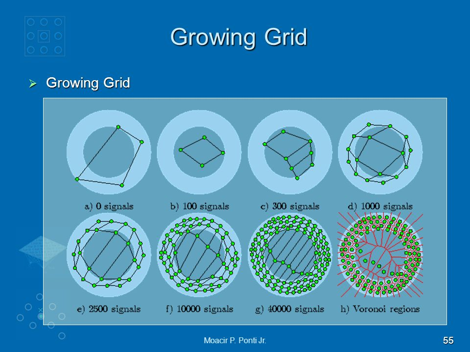 Growing Grid Growing Grid Moacir P. Ponti Jr.