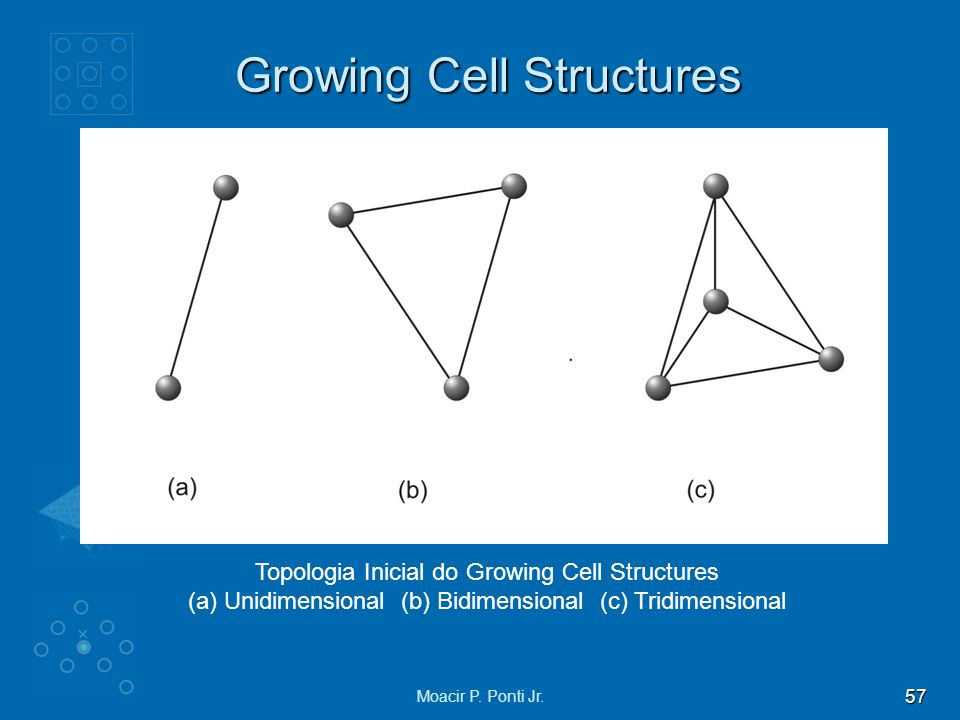 Growing Cell Structures