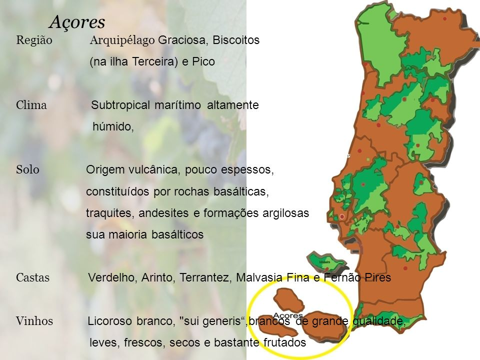 Açores Região Arquipélago Graciosa, Biscoitos