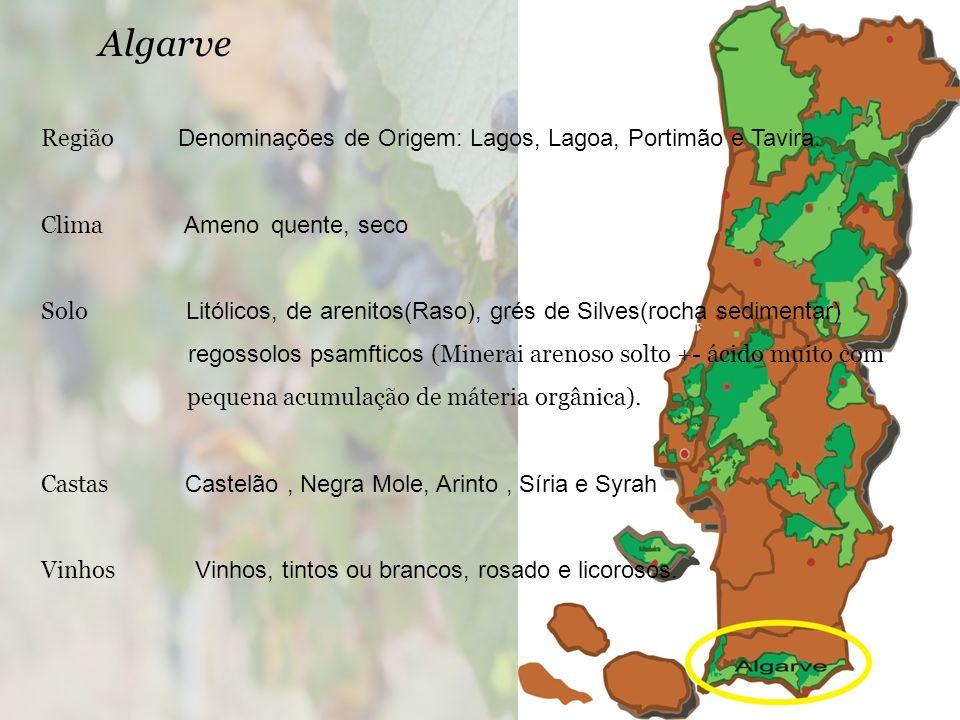 Algarve Região Denominações de Origem: Lagos, Lagoa, Portimão e Tavira. Clima Ameno quente, seco.