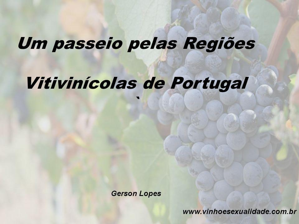 Um passeio pelas Regiões Vitivinícolas de Portugal