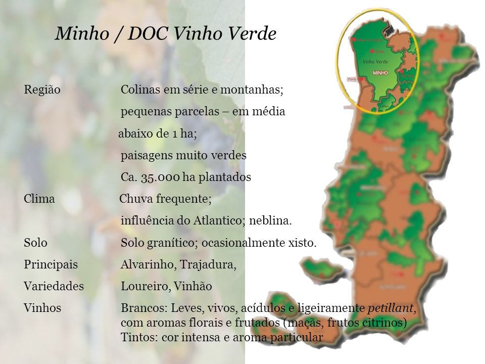 Minho / DOC Vinho Verde Região Colinas em série e montanhas;