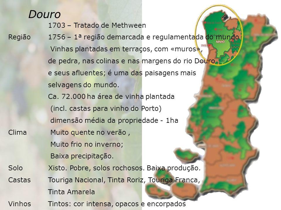 Douro 1703 – Tratado de Methween