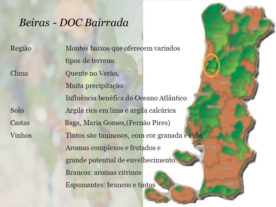 Beiras - DOC Bairrada Região Montes baixos que oferecem variados