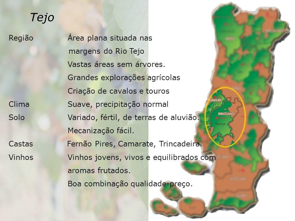 Tejo Região Área plana situada nas margens do Rio Tejo