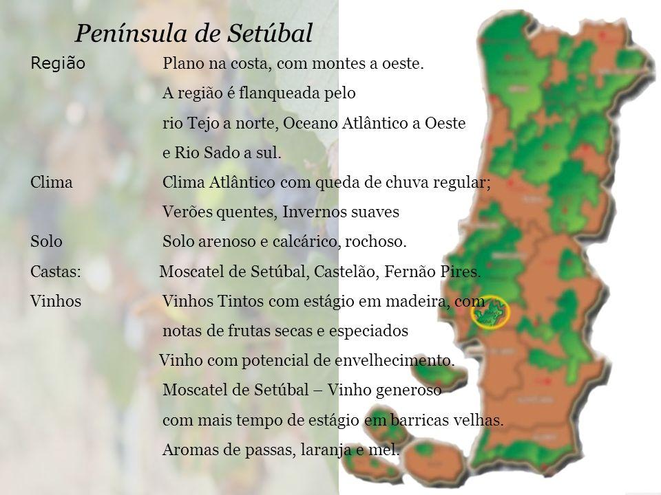 Península de Setúbal Região Plano na costa, com montes a oeste.