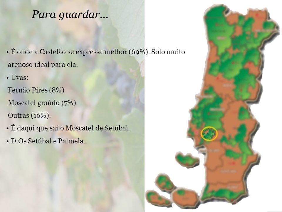 Para guardar... É onde a Castelão se expressa melhor (69%). Solo muito